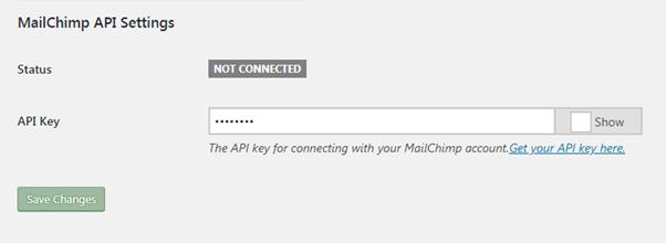 MailChimp-API-Settings API Key Status not connected