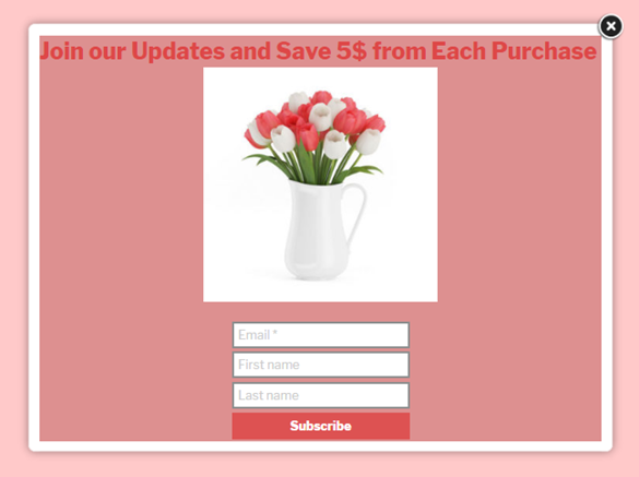 Subscription popup Join our updates and save 5$ from each purchase