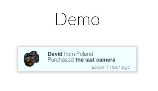 Sample recent sales popup David from Poland purchased the last camera